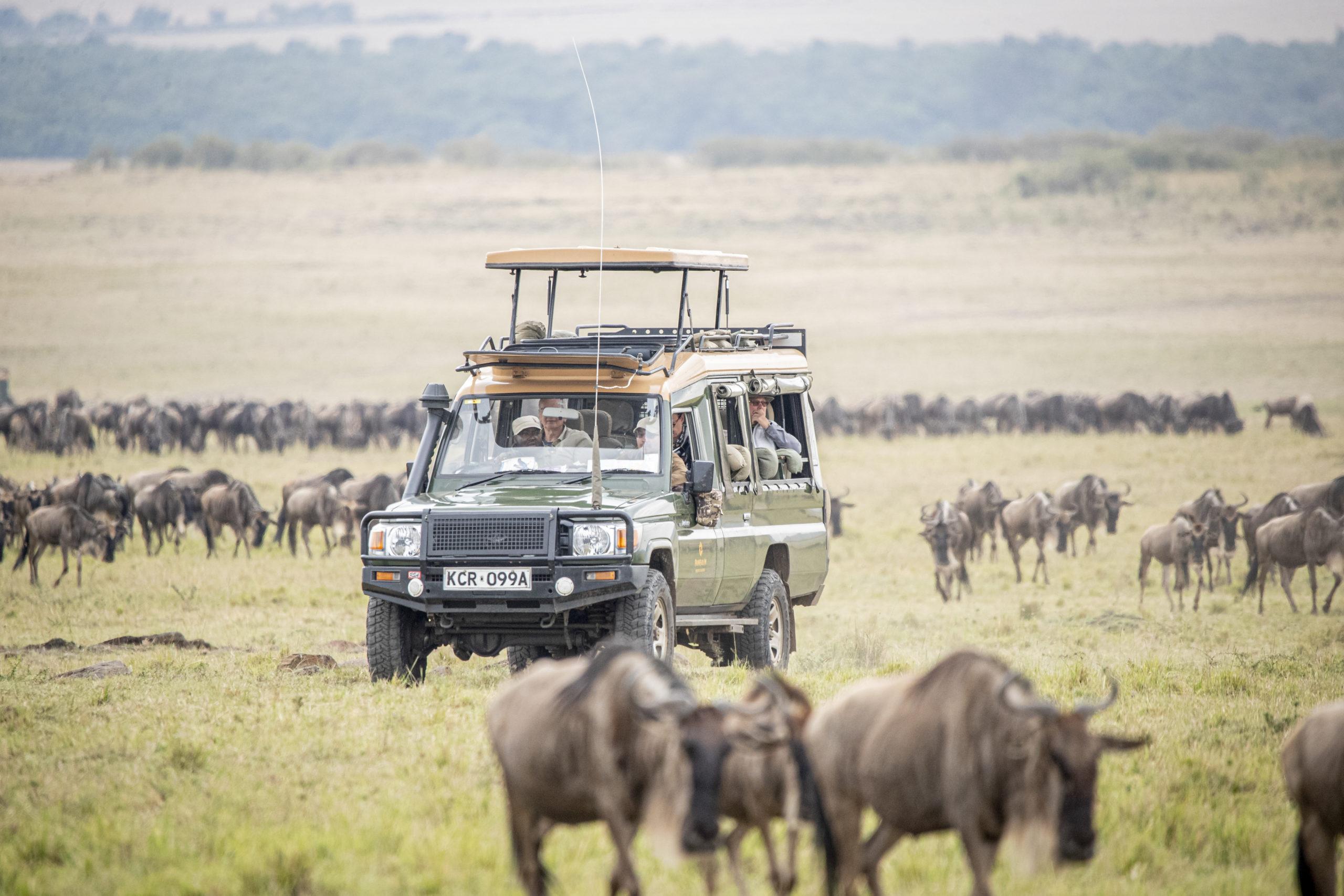 mara migration vehicle