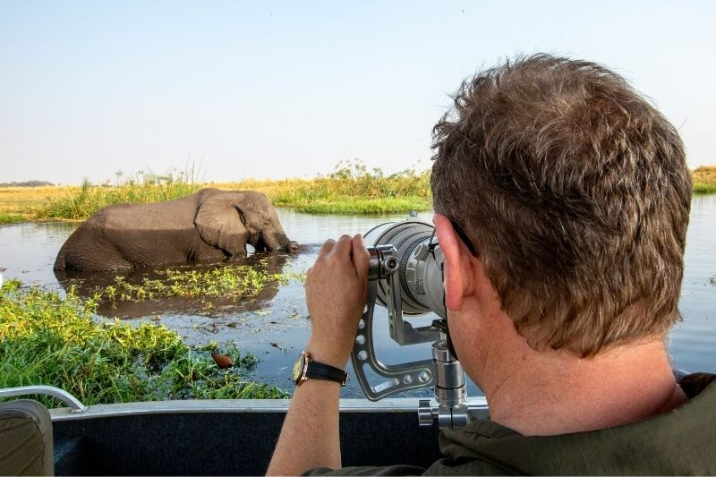 guest photographing elephant
