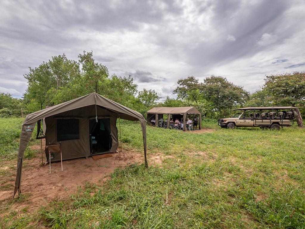 Pangolin Mobile Camp 01
