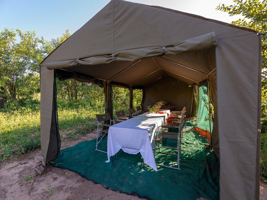 Pangolin Mobile Camp 04