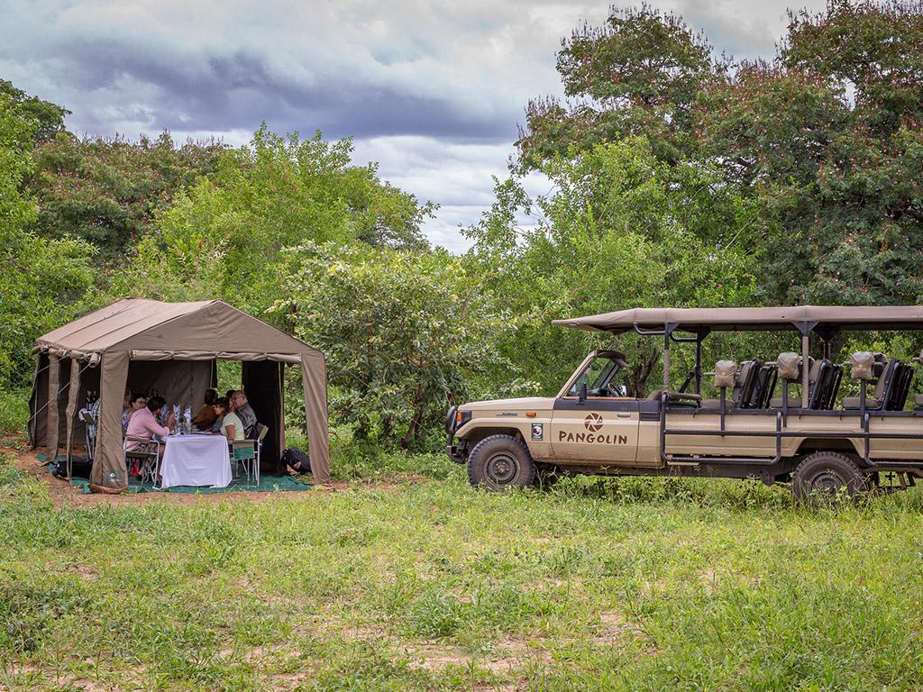 Pangolin Mobile Camp 05