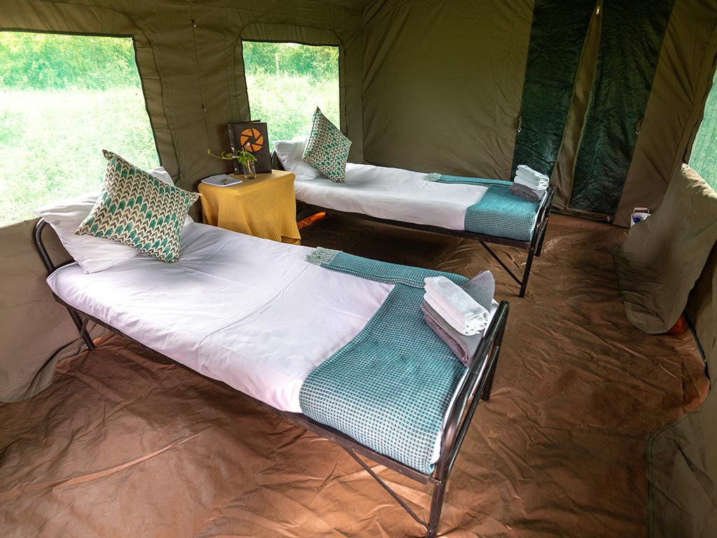 Pangolin Mobile Camp 08
