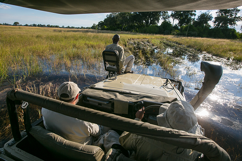 Driving through the Okavango Delta
