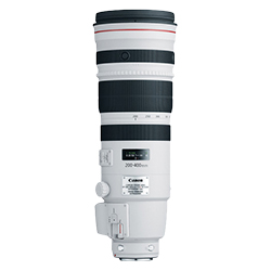 Canon 200-400mm f4L IS USM Extender 1.4x
