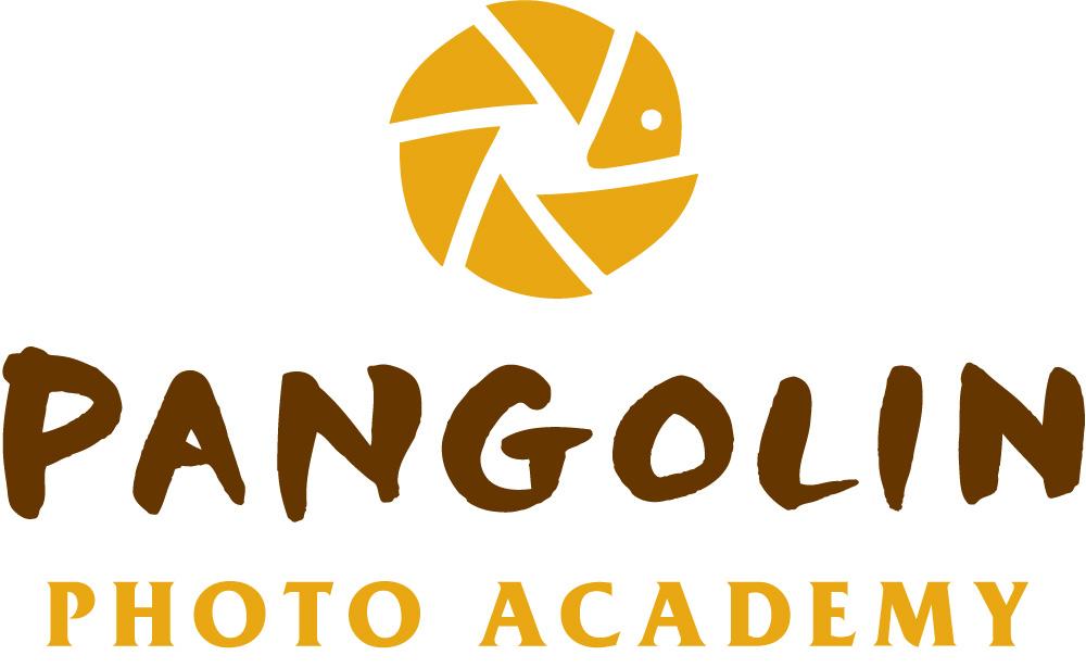 Pangolin-Photo-Academy