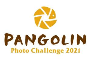 Pangolin Photo Challenge Logo