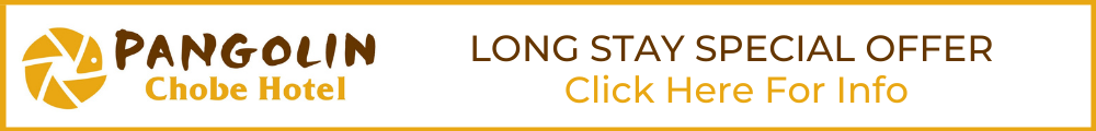 long stay special banner